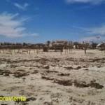 TÚNEZ POSREVOLUCIÓN, LA PUÑETERA ZONA TURÍSTICA DE LA ISLA DE DJERBA