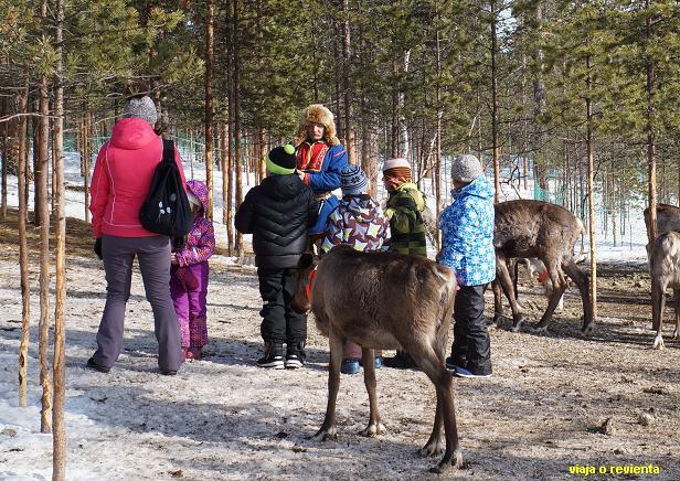 campamento turistas sami