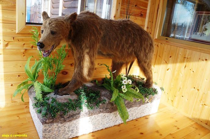 oso peninsula kola