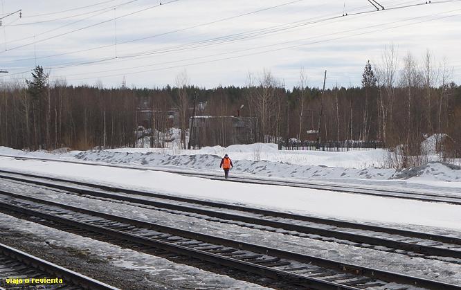 tren murmansk