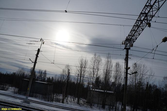 tren artico